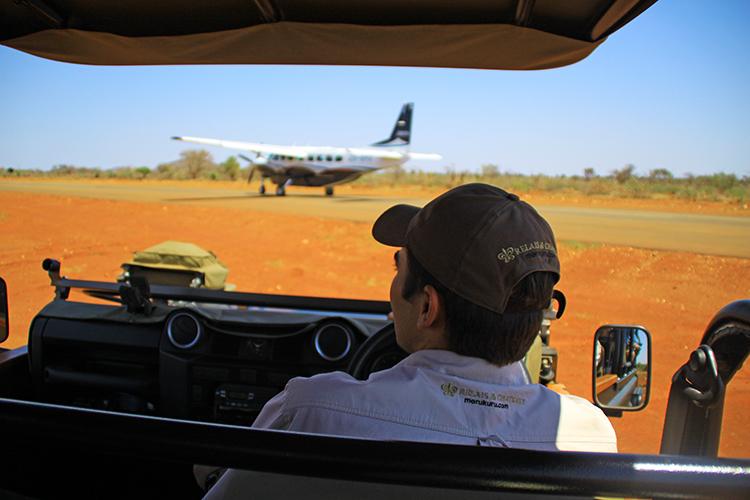 On safari at Morukuru