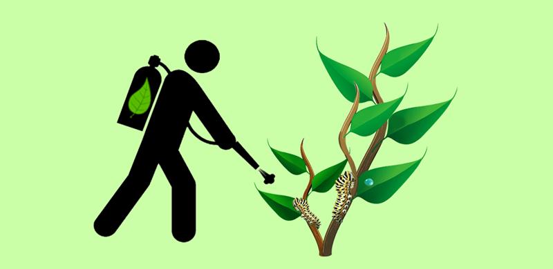 Biopesticides - Patent Landscape Report