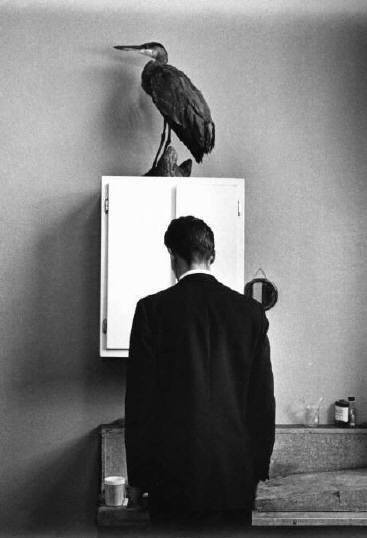 The Heron, 1969 © André Kertész
