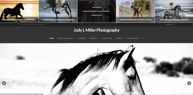 RLC Design - Artist Website Design
