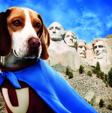 underdog  Heroes What They Do  Why We Need Them