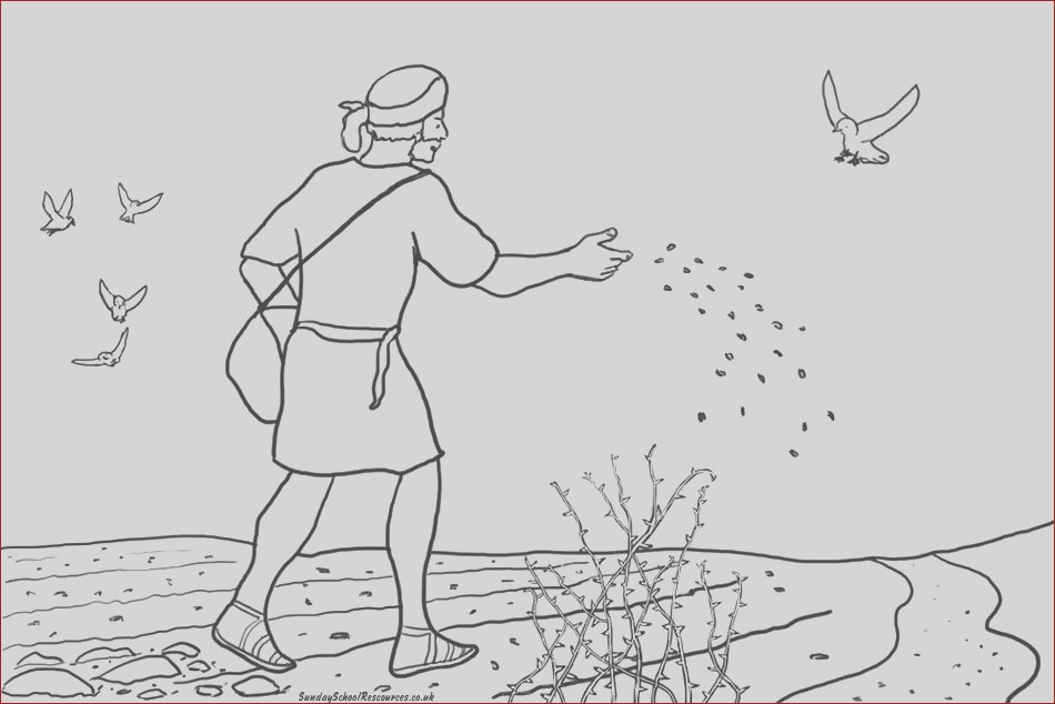 17 Best Of Photos Of Parable Of the sower Coloring Page