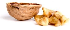 Walnuts - by George Hodan