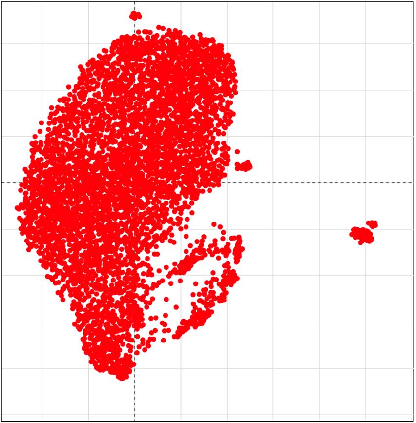mapa del mundo TED