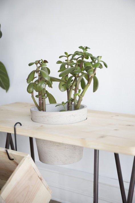 banc diy plantes