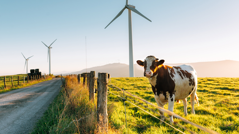 UK's first consumer owned wind farm launches