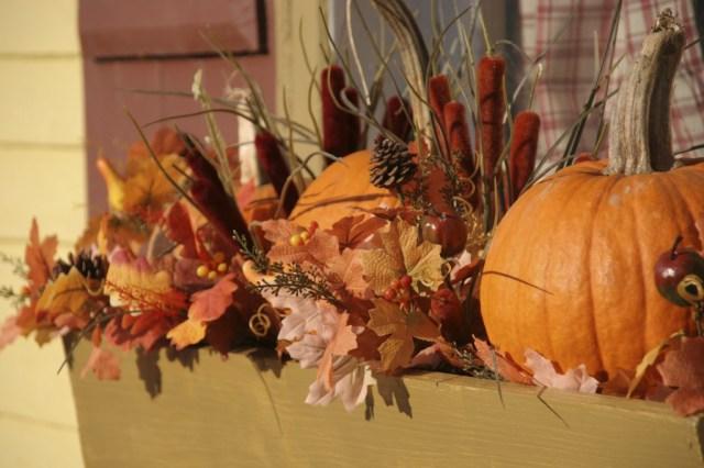 pumpkins staging