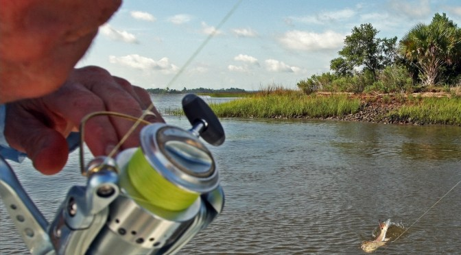 Saltwater Fishing: A Father's Day Fishing Tail