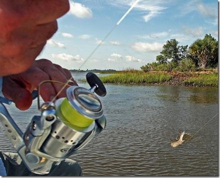 Salt-Water-Fishing