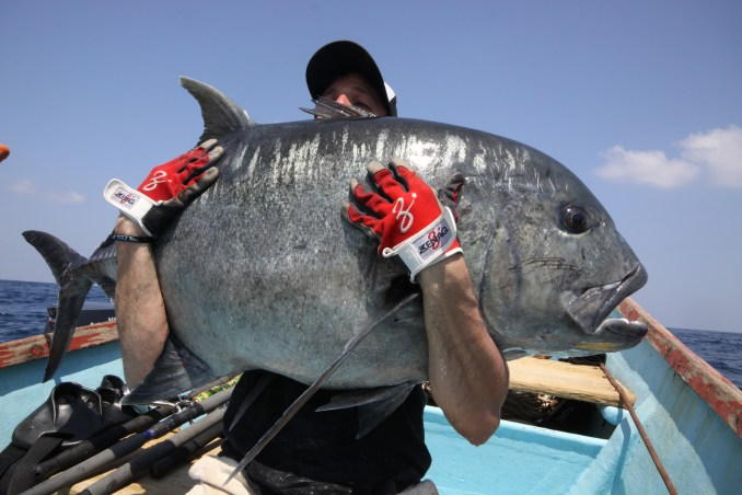 Carangue Giant Trevally