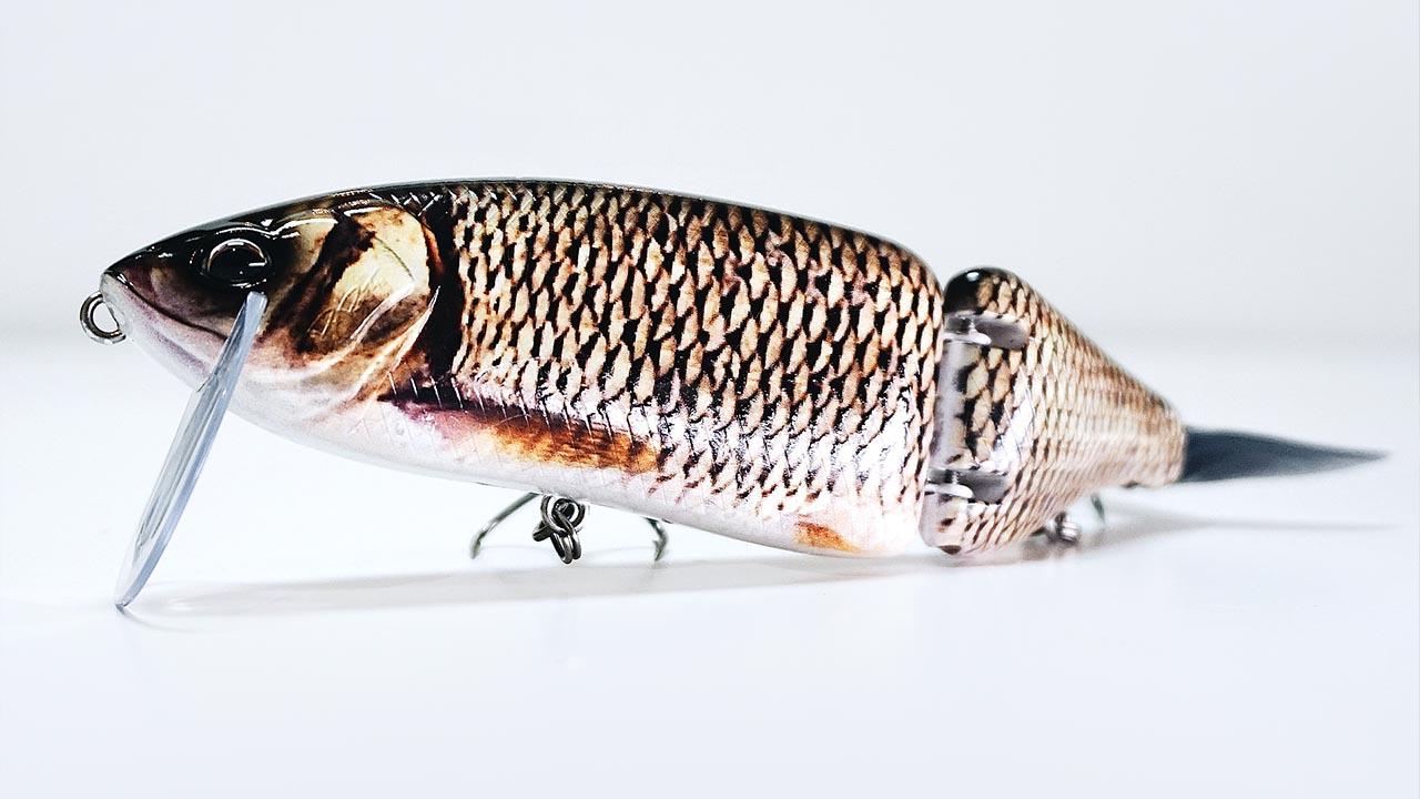 Swimbait : tout savoir sur la pêche aux swimbaits
