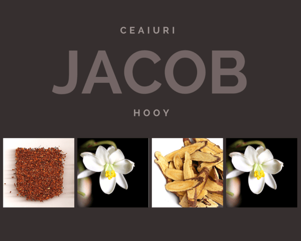 ceaiuri Jacob Hooy