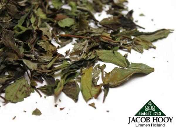 Ceai Alb Jacob Hooy