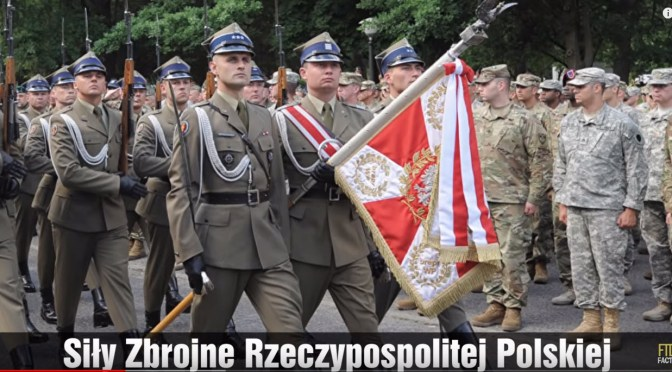 Polish Armed Forces – How Strong Are They?