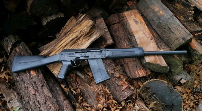 What are rear stock options for SDS Lynx 12 Gauge shotguns?