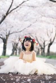 Busan Gamcheon Village Cherry Blossom Family Photographer-16