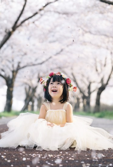 Busan Gamcheon Village Cherry Blossom Family Photographer-16