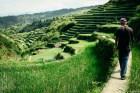 Walking among rice terraces in Bontoc