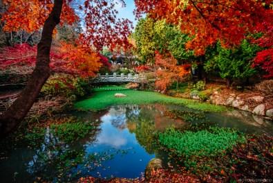 Autumn Afternoon on Mireukdo-2