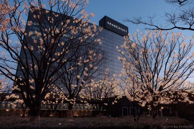 Seoul South Korea Corporate Event Documentary Photographer-1
