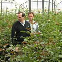 Tom Royer, left, regularly visits South America to check on the latest flower crops.