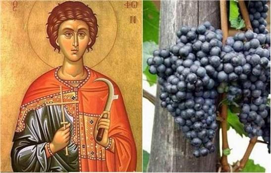 Свети Трифон Зарезан