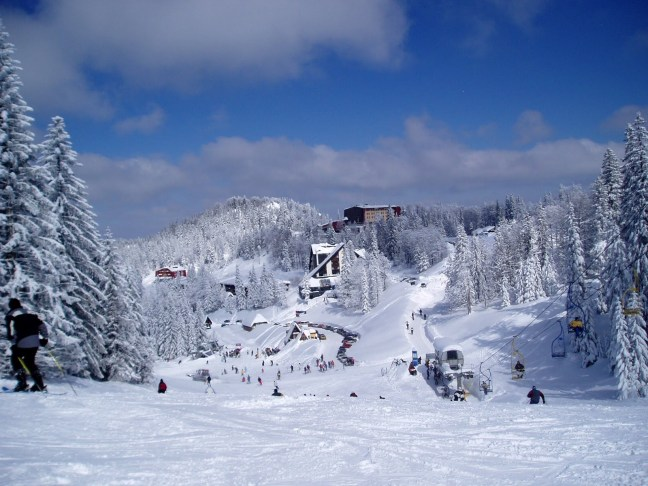 Планина Яхорина