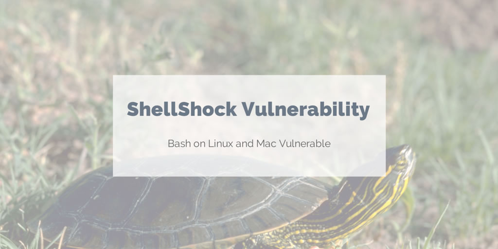 Update Bash on Linux and Mac machines to protect against ShellShock vulnerability