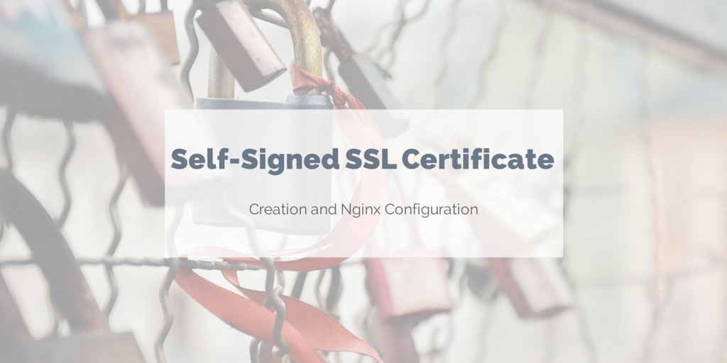 Create A Self Signed Ssl Certificate For Nginx Rude Otter