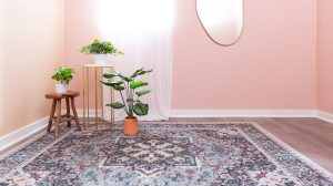 zoom backgrounds living chic background virtual wall plants pink decor dining ruggable tips