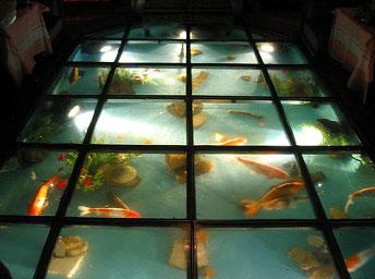 Lantai Kaca dengan Kolam Ikan  Blog  Rumahpropertigratiscom