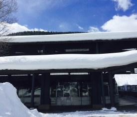 Snowguardoverdoor.jpg