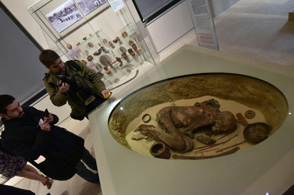 Museo Egizio Shop