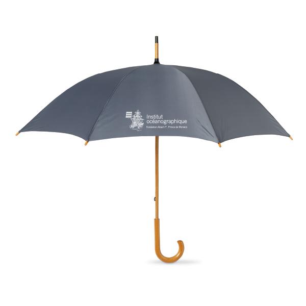 ombrello-grigio-musée-oceanographique-monaco
