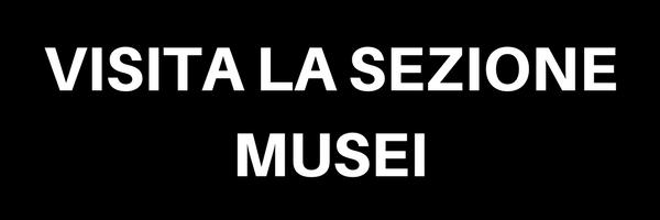 VISITA LA SEZIONE MUSEI