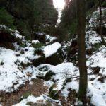 Winter im Griesgrund