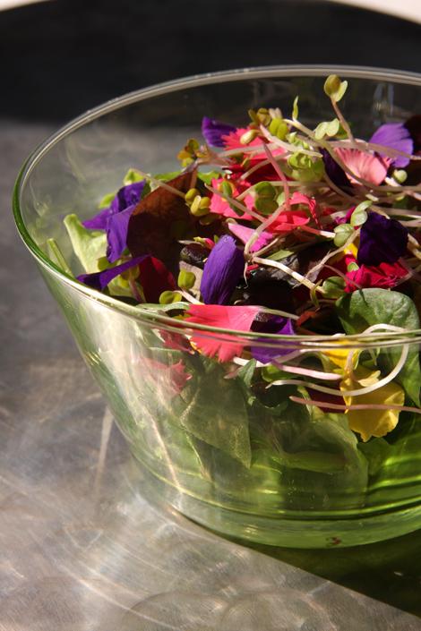 insalata fiorita   ©foto Sandra Longinotti
