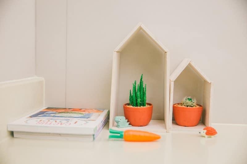 D.I.Y Cactus House
