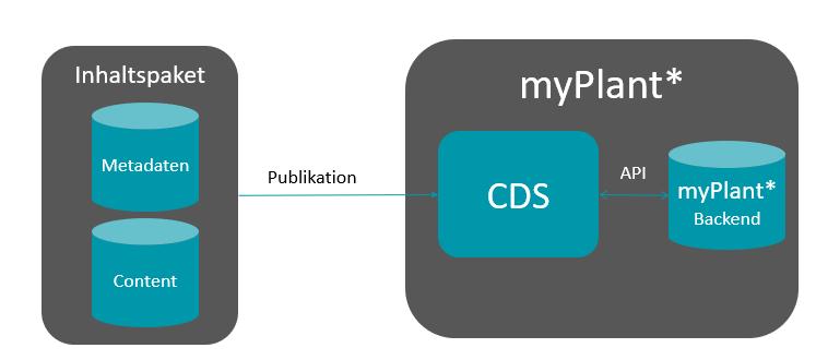 Publikation auf dem SCHEMA CDS