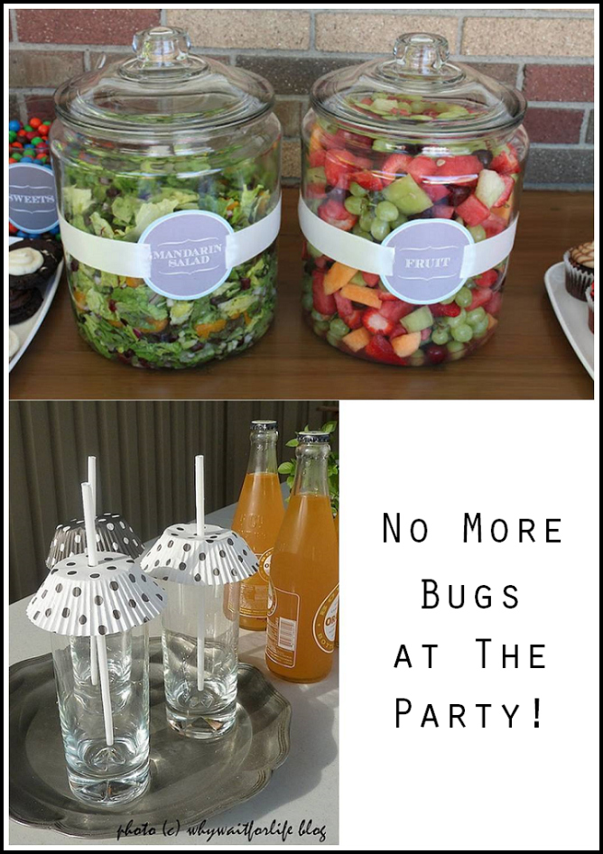 How to keep the Bugs off of your food when entertaining outdoors