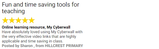 My Cyberwall Review 2