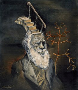 Darwin Took Steps GMellow