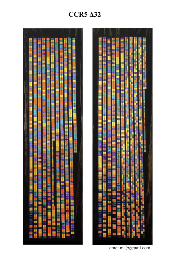 DNA sequence by Emei Ma