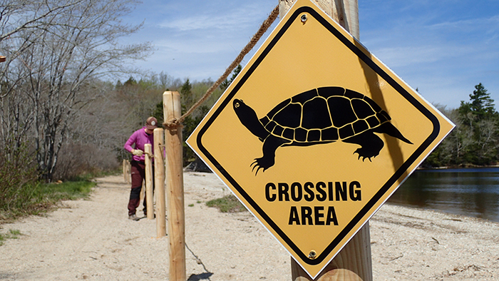 Turtle-bridge-in-Silver-River-Nova-Scotia_Photo_NCC