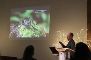Sean-McCann-spider-photos