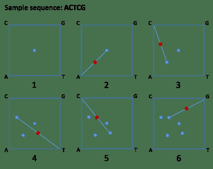 chaos-game-representation-ACTCG