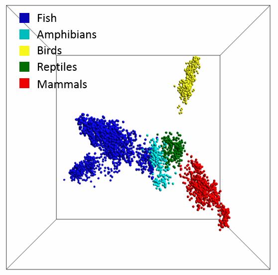 map-vertebrate-life