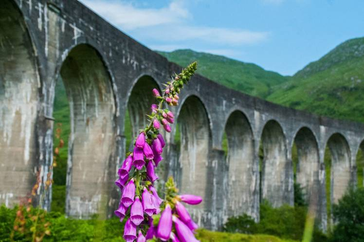 Glenfinnan viaduct (credit: Andrew Palmer photography)