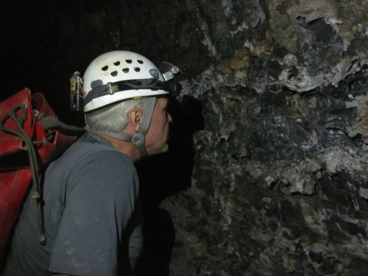 Steele examining cave walls
