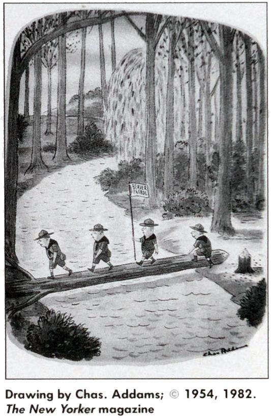 Scouting Cartoon (12 of 12)